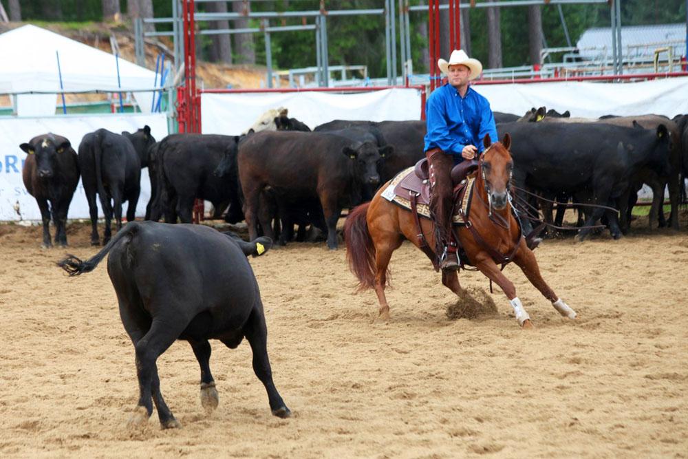 Ranching dejtingsajt